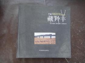 中国·藏羚羊