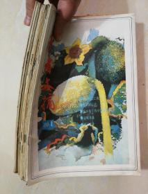 读者文摘1989年全年12期少第3期。