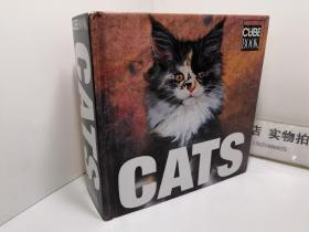CUBE BOOK CATS