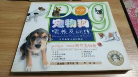 宠物狗喂养及训练
