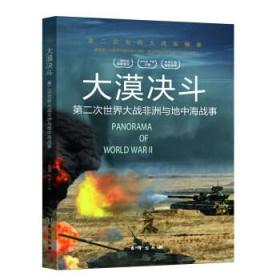 天下决斗:第二次世界大战非洲与地中海战事第二次世界大战纵横录