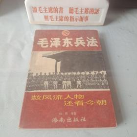 《毛泽东兵法》