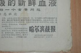 哈尔滨战报1968.10.16.4版