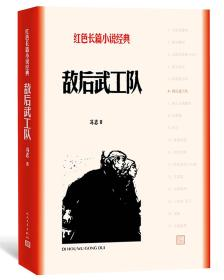 ST红色长篇小说经典系列:敌后武工队