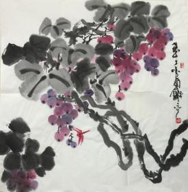 【保真】〖楊和平〗當代知名藝術家、張大千大師再傳弟子、中國國畫家協會會員、 中國書法家協會山西分會會員、手繪四尺斗方花鳥(68*68CM)。