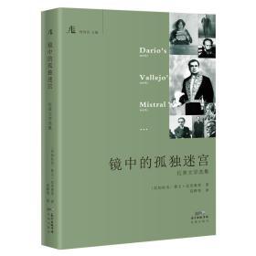 镜中的孤独迷宫:拉美文学选集 文学馆丛书