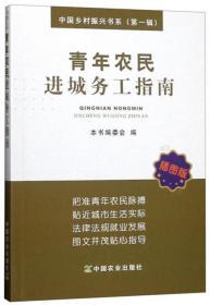 青年农民进城务工指南(插图版)/中国乡村振兴书系(第一辑)