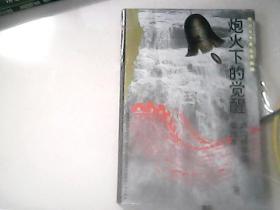抗日战争史丛书续编:炮火下的觉醒——卢沟桥事变