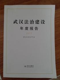 武汉法治建设年度报告2017