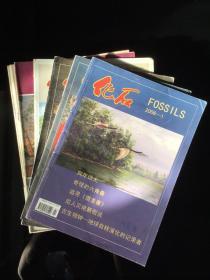 《化石》杂志 34本可合售可散配 绝版收藏