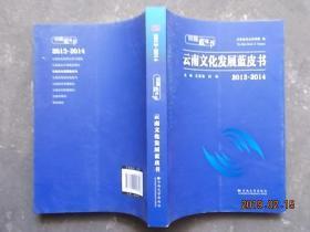 2013-2014-云南文化发展蓝皮书