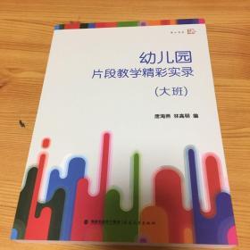 梦山书系:幼儿园片段教学精彩实录(大班)