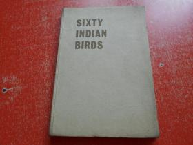 SIXTY INDIAN BIRDS鸟类研究(16开精装)附大量图片