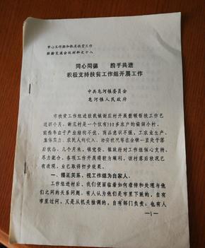1995年宿迁市皂河镇扶贫经验介绍