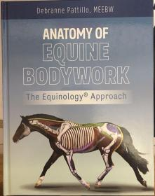 anatomy of equine bodywork   马的结构与解剖