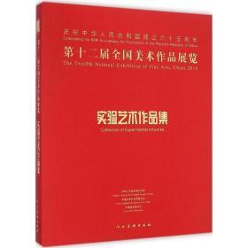 第十二届全国美术作品展览:实验艺术作品集 正版   9787102069340