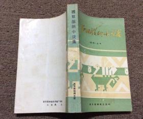 西双版纳小说集