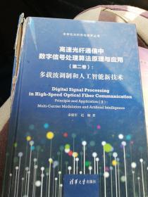 高速光纤通信中数字信号处理算法原理与应用(第二卷):多载波调制和人工智能新技术