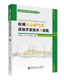 松南火山岩气田高效开发技术与实践 4