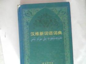 汉维新词语词典