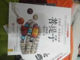 京城第一籽教你盘藏菩题子