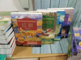 动物小说大王沈石溪感悟生命系列:红豺+狼国女王+五彩龙鸟+雪域豹影 四册