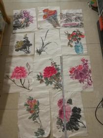 无款花卉画67(11张)