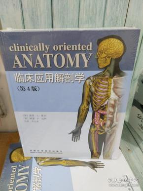 临床应用解剖学