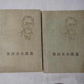 契诃夫小说选上下册