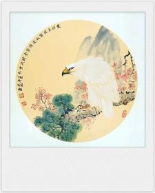 禽鸟国画原画