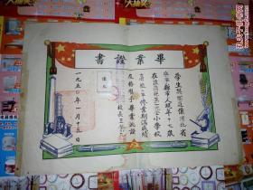 1950年辽西省铁岭县第一完全小学毕业证书