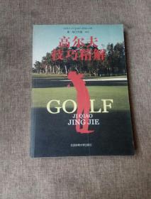 高尔夫技巧精解