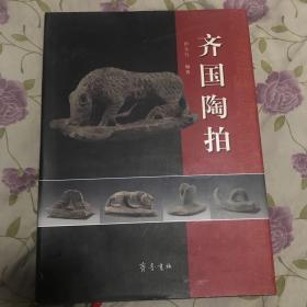 齐国陶拍【精装】 105
