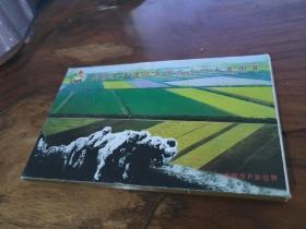 新疆生产建设兵团成立四十五周年 明信片 1套15张+15不同邮戳