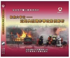 2019年安全月 聚焦大事故---近期典型爆炸事故案例解析 2DVD教育视频光盘9F05g