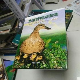 北京野鸭湖湿地