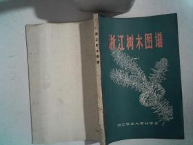 浙江树木图谱(一)