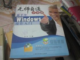 无师自通学电脑系列:新手学Windows操作入门