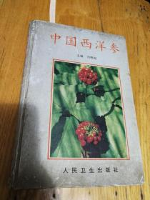 中国西洋参