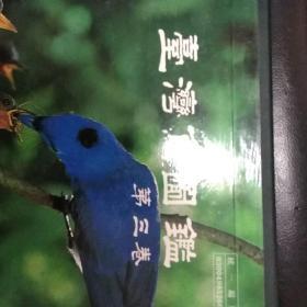 台湾鸟图鉴【第三卷