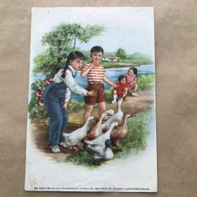 年画:养鸭,16开,李慕白绘,上海画片出版社1955年新1版2印