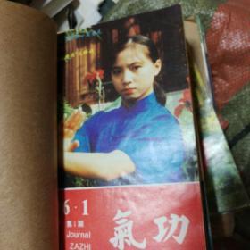 中国气功月刊1996年1一6,7一12册全合售