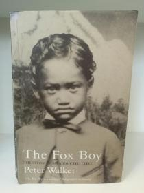 The Fox Boy The Story of an Abducted Child by Peter Walker (新西兰史)英文原版书
