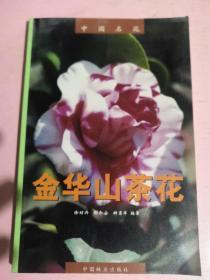 中国名花:金华山茶花