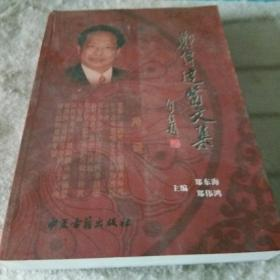郑伟达医文集