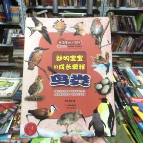 有温度的小百科:鸟类