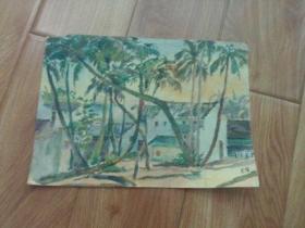 水彩画文献  著名水彩画家朱辉早期画作  椰林风光  左上角小缺损