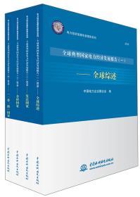全球典型国家电力经济发展报告/电力经济发展年度报告系列