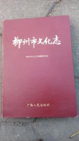 柳州市文化志