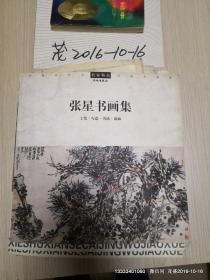 中国当代实力派书画家    张星书画集    (工笔 写意 书法 扇面)